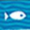 漂泊中的魚